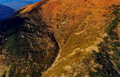 Parcul Natural Muntii Maramuresului