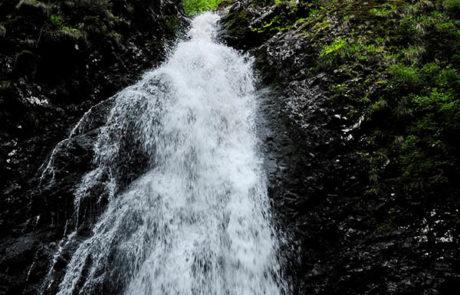 Cascada Custuri – Covatari – Runc, Sapanta