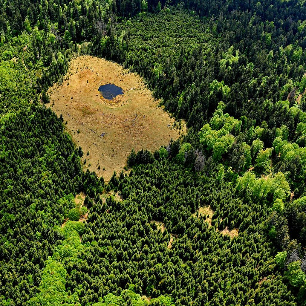 Rezervatia Taul lui Dumitru - Muntii Ignis, Maramures