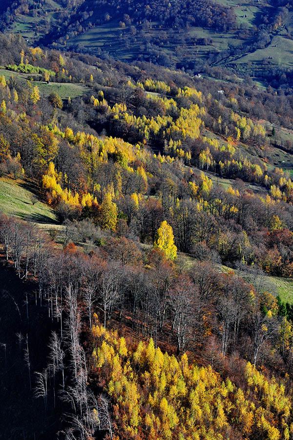 Zboruri de fotografiere în Munții Ignis - Maramures