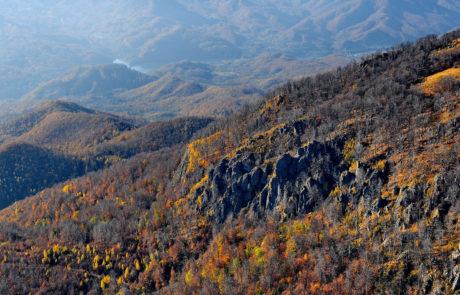 Zona Vârfului Igniş - Munţii Igniş